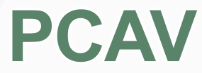 The Precast Concrete Association of Virginia (PCAVA )